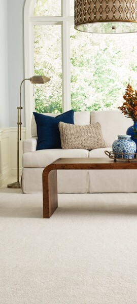 Carpet living room | Floors by Roberts